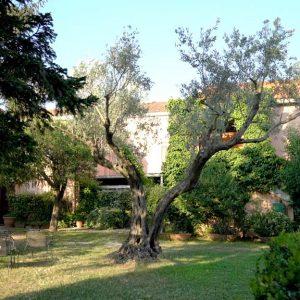 Giardino-esterno-con-alberi-Contrada-Guido-2