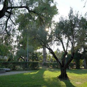 Vista-sul-giardino-Contrada-Guido-2